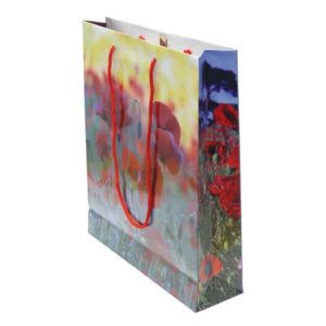 EW68-Laminated-Exhibition-Bag.jpg
