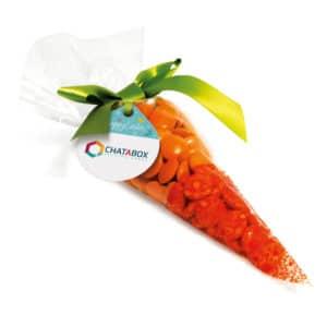 Beanie-Carrot-Bag1